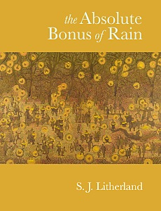 Cover of 'The Absolute Bonus of Rain'