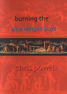 Burning the Blue Winged Boys book cover